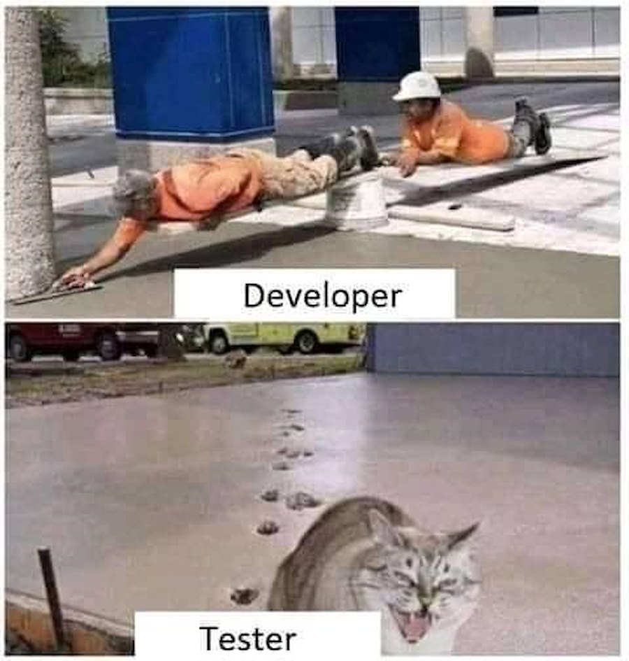 Those testers.. XD