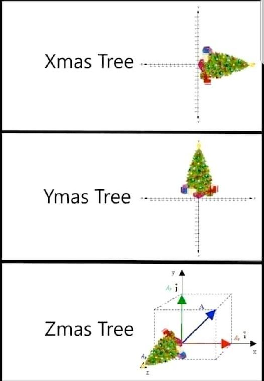 Xmas, Ymas, Zmas Tree All kind of trees :D